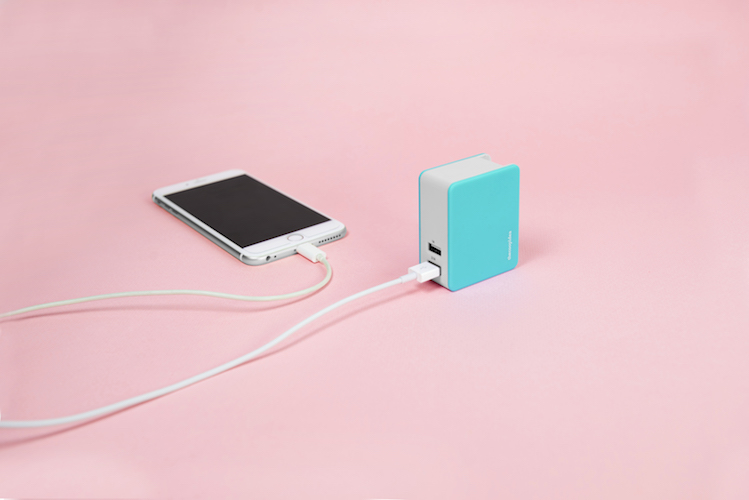 thecoopidea NOMAD Combo Charger