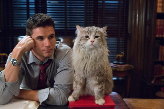 "M118 Robbie Amell and Mr. Fuzzypants tar in EuropaCorp's ""NINE LIVES? Photo Credit: Takashi Seida ?2016 EuropaCorp"