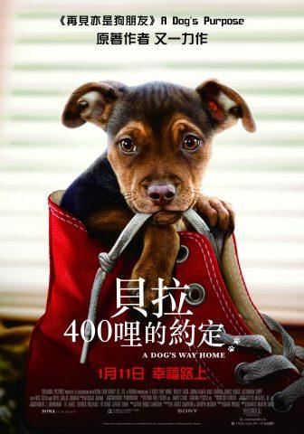 A Dog's Way Home_HK poster_final_cmyk